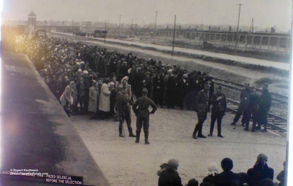 KRA Auschwitz - 6