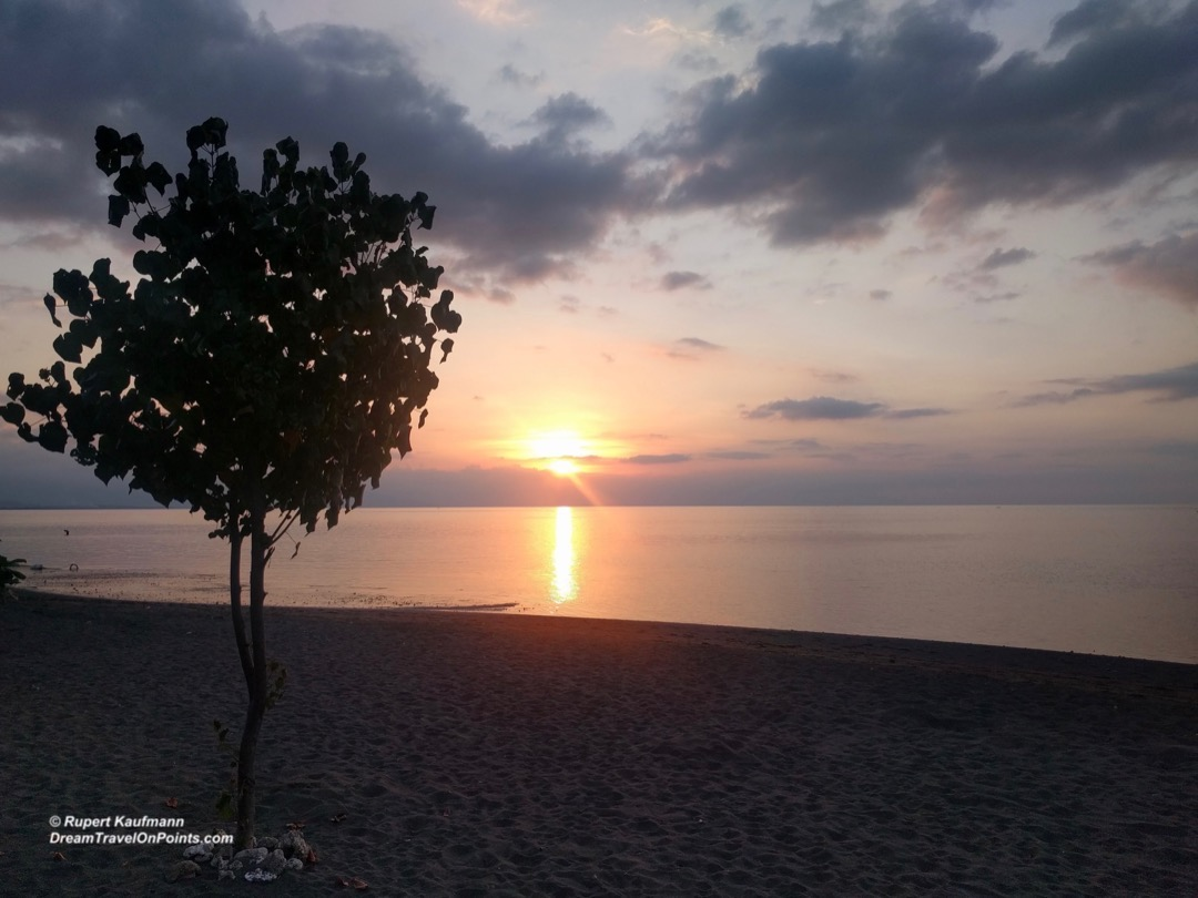 bal-lovinabeach-sunset-beach-tree