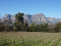 Cape Wine Country
