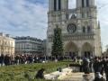 DSC_0953 Notre Dame