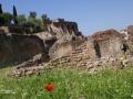 ROM13 Foro Romano 23