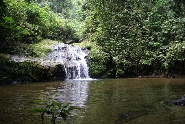 Danum Valley Waterfall